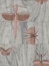 Insektentapete Wings von ARTE - 42000