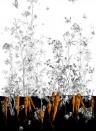 Edmond Petit Tapete Fenouil gauche - Noir Orange