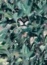 Coordonne Tapete Hidden Puma - Winter