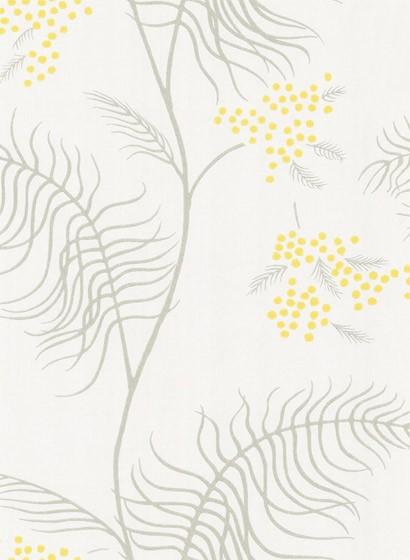 Mimosa - Designtapete von Cole and Son - Creme/ Grau/ Gelb