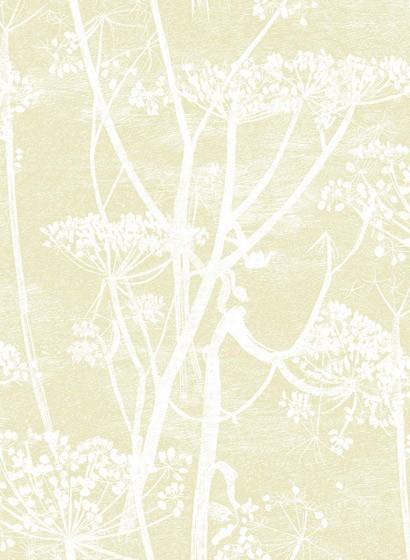 Cow Parsley - Designtapete von Cole & Son - Straw on White