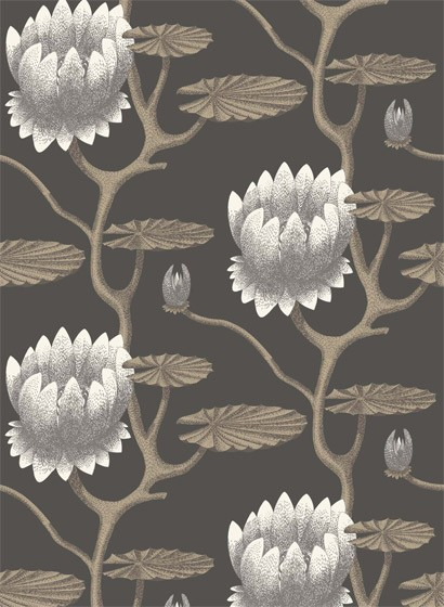 Summer Lily - Designtapete von Cole & Son - Black and Gilver