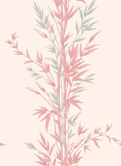 Tapete Bamboo von Cole & Son - Pink