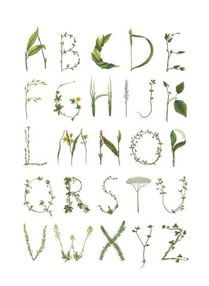 Wandbild ABC for the Spelling Bee von Rebel Walls - Green