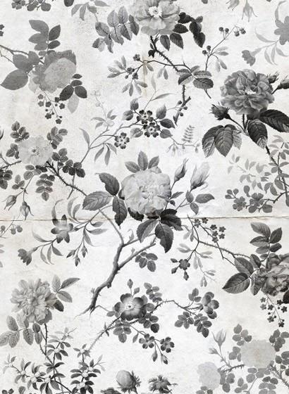 Wandbild Rosegarden von Rebel Walls - Black & White
