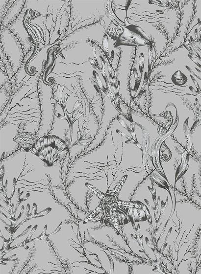 Meeres Tapete Seahorse von Hookedonwalls - Silber