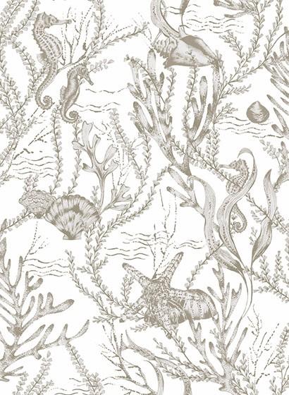 Meeres Tapete Seahorse von Hookedonwalls - Weiß