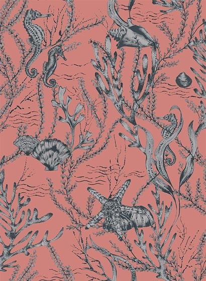 Meeres Tapete Seahorse von Hookedonwalls - Rot