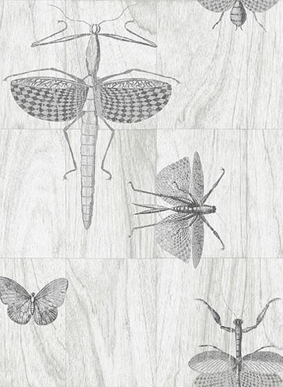 Insektentapete Wings von ARTE - 42001