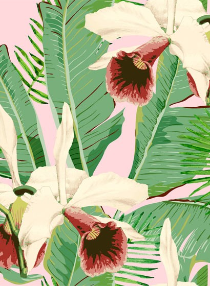 Florale Tapete Treasure Island von MINDTHEGAP - WP20365