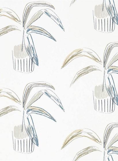 Topfpflanzen Tapete Crassula von Scion - Putty/ Slate