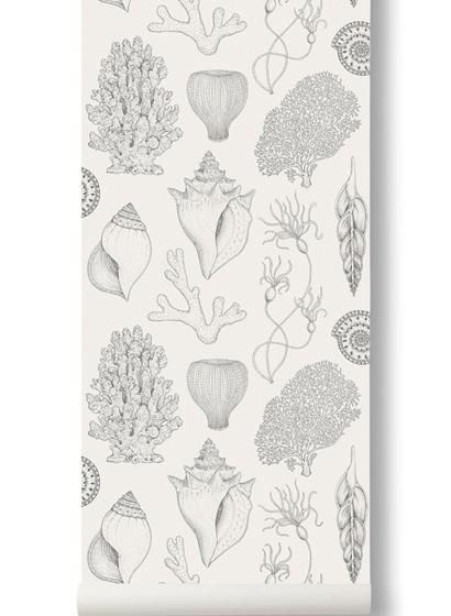Muschel Tapete Shells von Katie Scott - Off-White