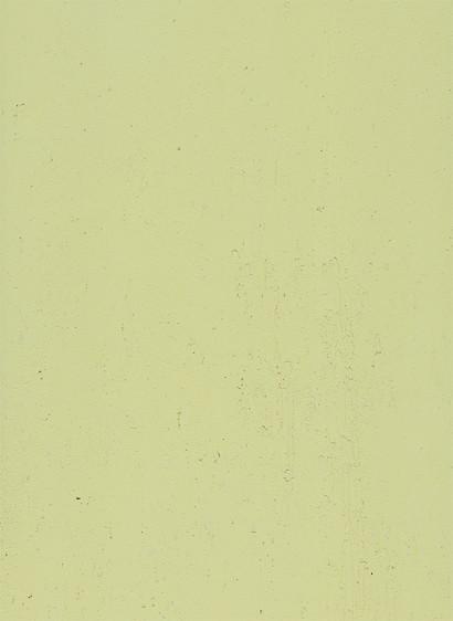 terrastone rustique - 10 kg - limone